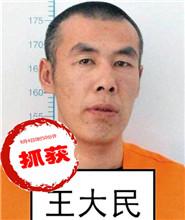 犯罪嫌疑人:王大民