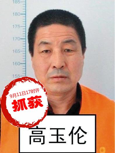 犯罪嫌疑人:高玉伦