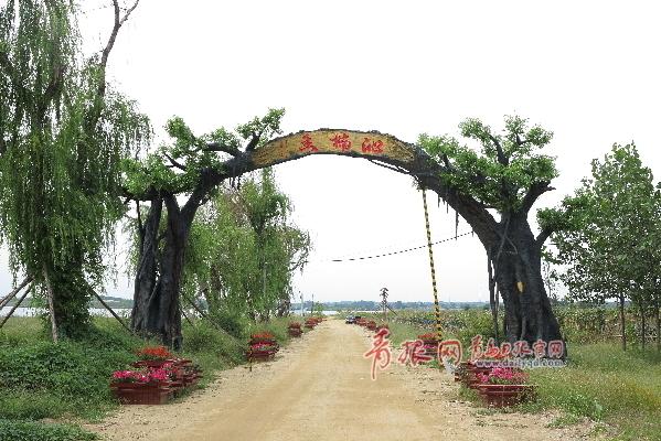 沁楠香農業生態園 榕樹造型大門