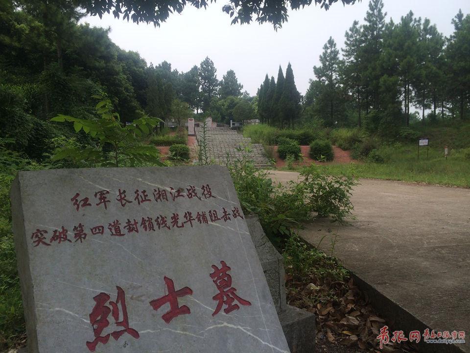 """""""唐春林说,战斗结束后,当地八九名村民上山掩埋牺牲的红军战士,用了三图片"""