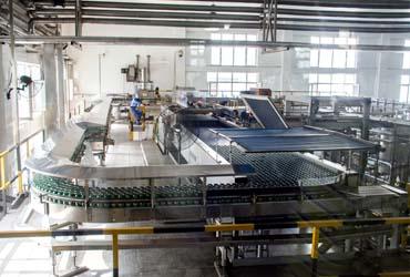 实拍青啤标准化生产全过程