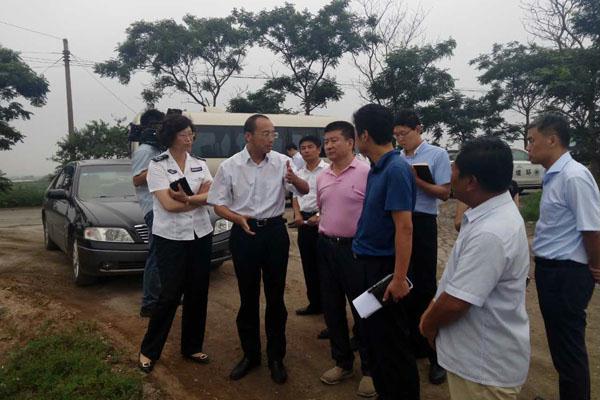 王作安书记现场督办全区突出环境问题整改情况