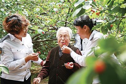 89岁林秀珍走进樱桃园