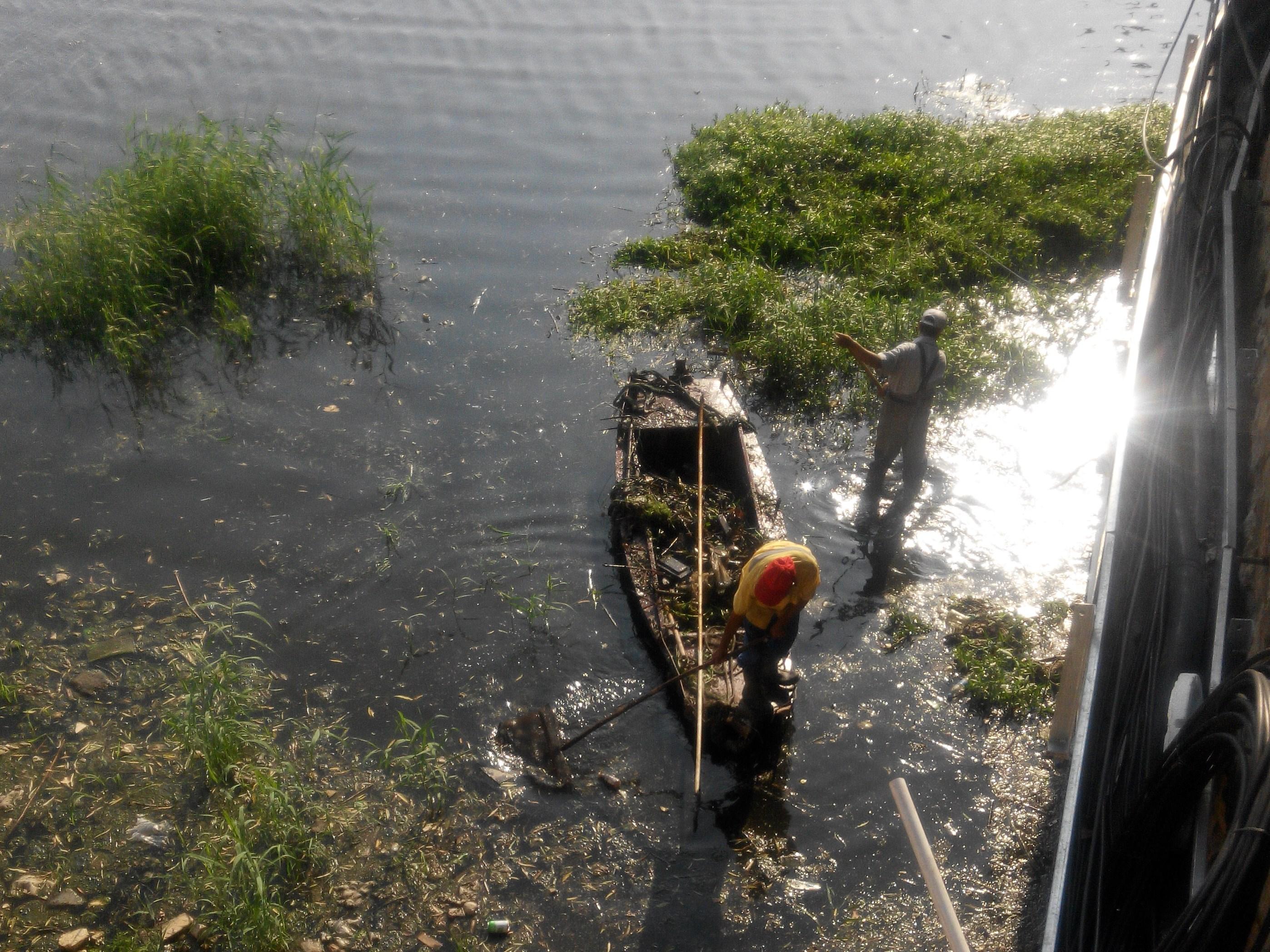 烈日下 环卫工人撑船清理垃圾