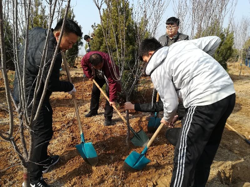 区总工会积极参与植树节活动