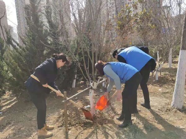 双山街道保儿社区开展植树节主题活动