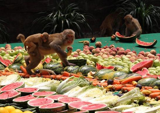 """8000余斤超级水果拼盘宴请""""美猴王"""""""