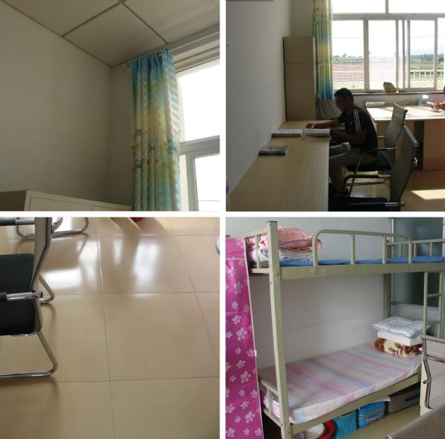 旧店动监站用心行动、扎实开展环境卫生综合整治工作