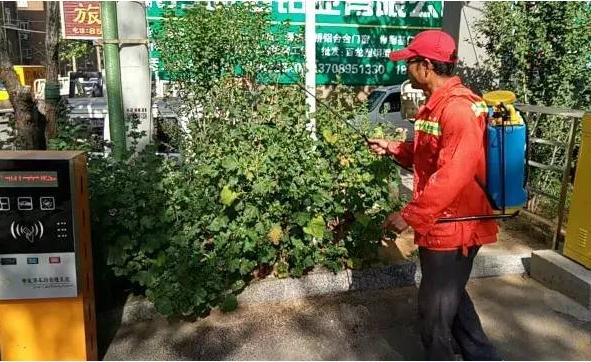 阜新路街道开展夏季集中灭蚊行动