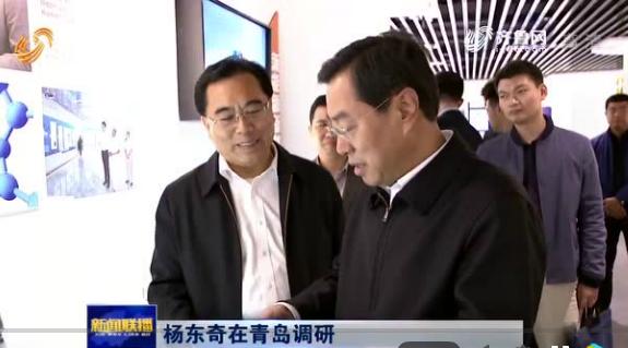 省委副书记杨东奇到青岛国际院士港调研