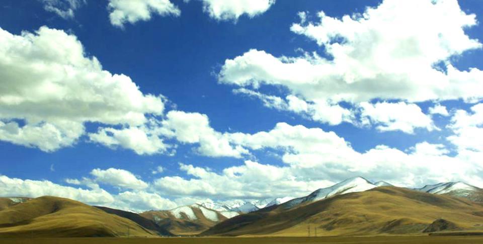 【青报摄友西藏行·色季拉山】格桑花就在云端的山巅上
