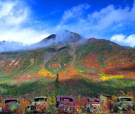 废弃卡车锈色五彩斑斓 融入自然美景