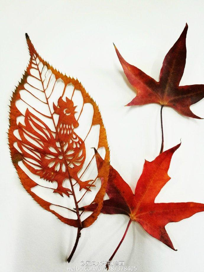 金鸡报晓!青岛嫚用创意树叶画迎接新年