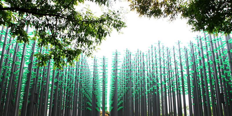 """30000啤酒瓶组成""""啤酒丛林"""" 成西海岸新""""网红"""""""