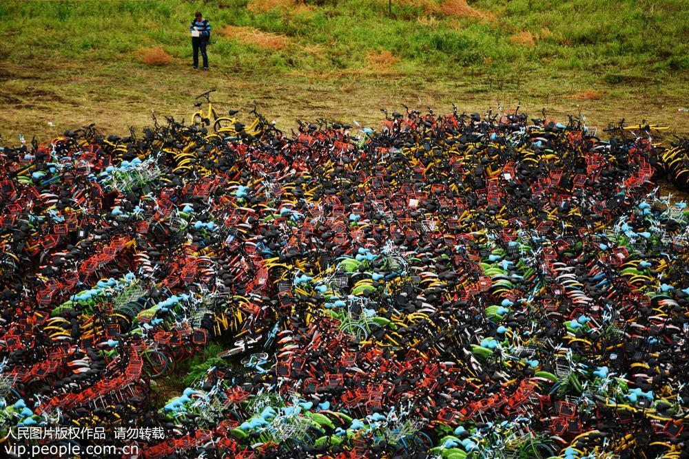 杭州共享单车密密麻麻堆积如山 场面壮观【4】