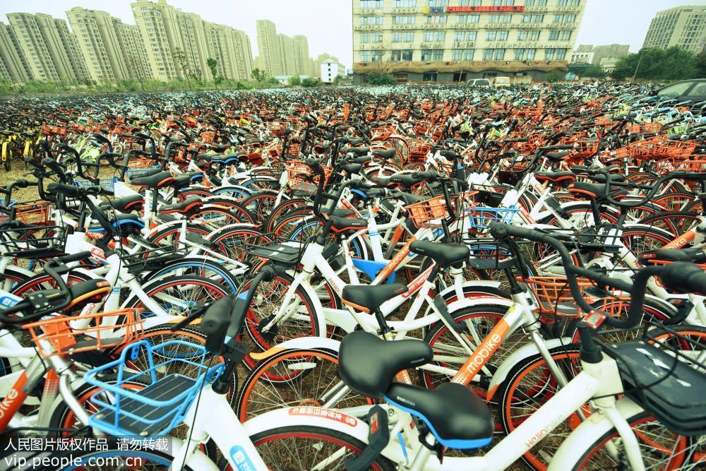杭州共享单车密密麻麻堆积如山 场面壮观