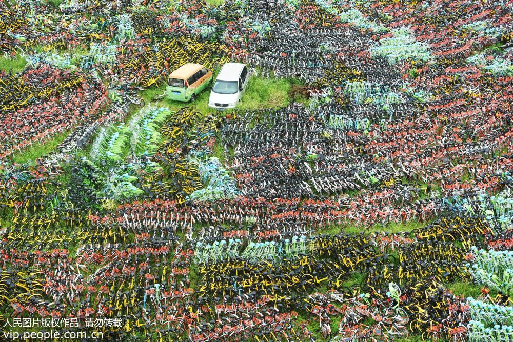 杭州共享单车密密麻麻堆积如山 场面壮观【3】