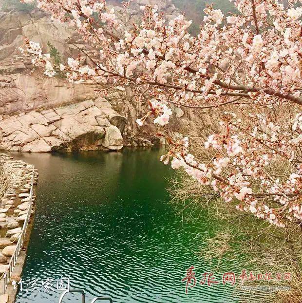 青岛全域旅游总体规划