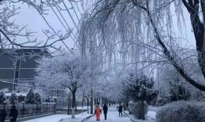 """""""三九严寒""""今日到来 中国大部地区持续天寒地冻"""