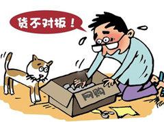 """青岛""""12348""""热线接话量增6成 网购纠纷成热点"""
