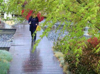 青岛明后天还有小雨 22日最低气温或达-4℃