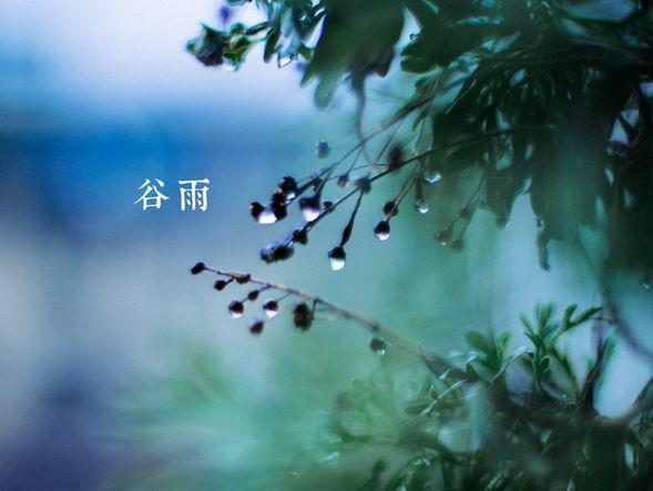 """4月20日11时13分""""谷雨"""":遇见最美暮春色"""