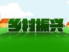 胶州启动乡村振兴联镇帮村行动 选派人数为历年最多