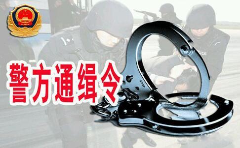 公安部发A级通缉令通缉10名文物犯罪在逃人员