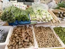 台风等自然灾害拉高青岛菜价!香菜能卖到25元一斤