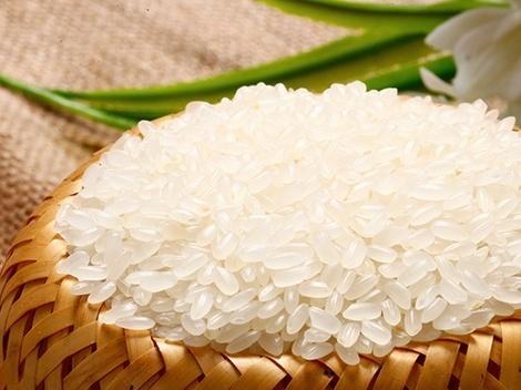 年产量仅有65万吨 你吃的五常大米是真的吗?