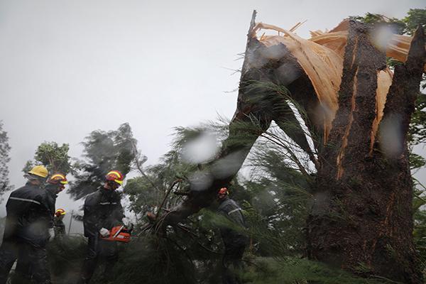 """台风""""山竹""""致广东4人死亡 经济损失42.49亿元"""