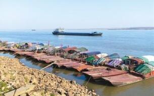 农业农村部将实施六大举措加强长江水生生物保护