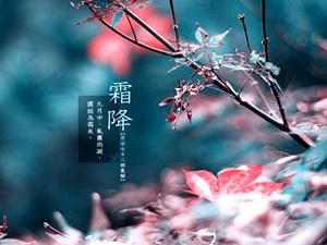 """明日19时22分迎""""霜降"""" 青岛26日前后有雨"""