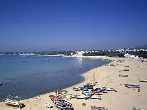突尼斯首都爆炸袭击受伤人数升至20人