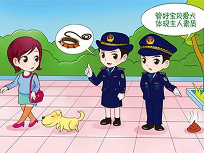 遛狗不牵绳最高罚款千元 青岛开展养犬管理专项整治