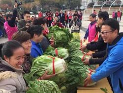 万斤白菜进社区 青岛志愿者广场11月主题活动举行