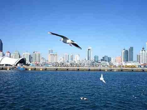 市环保局:今天上午青岛空气质量轻度污染!