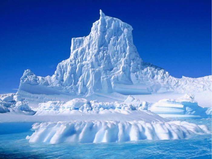 人均消费11万!这些人成了南极游的主力