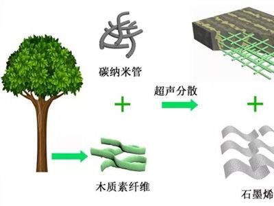 木头也能做电池?青岛研发出高性能电池 成本还低