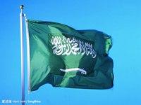 沙特国王改组内阁 重建安全和事务委员会