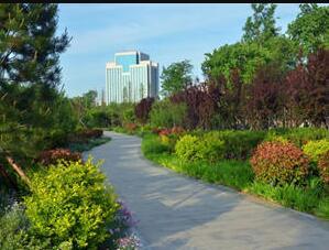 """构建""""花海城阳""""!城阳今年将栽植时令花卉8000平米"""