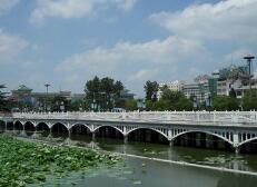 學深圳趕龍華!平度簽約28個項目,總投資516.5億