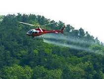 青岛启动飞机施药防治林业有害生物工作涉及4区3市