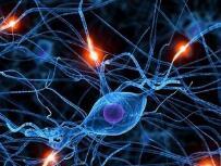 国内规模最大学术水平最高 神经病学学术会议在青召开