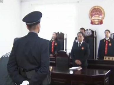 人民法院今年裁定特赦九类服刑罪犯23593人
