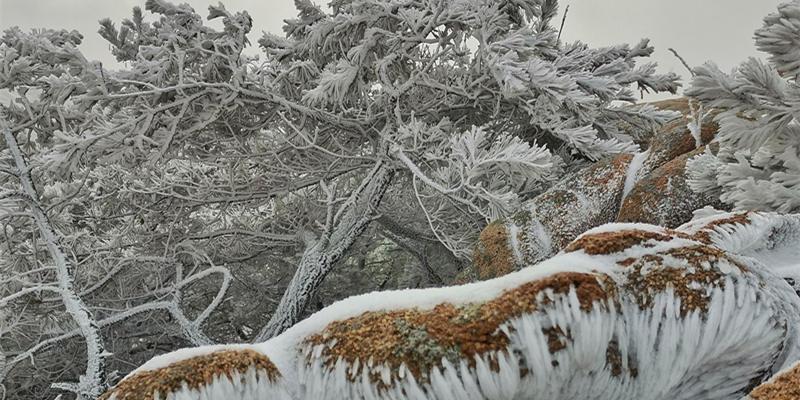 小珠山變身冰雪世界 游人流連忘返