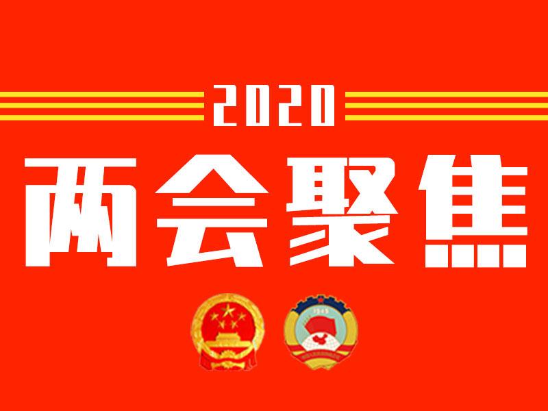 """住青省人大代表、政协委员热议""""打造对外开放新高地"""""""