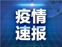 6月15日0—24時青島無新增確診病例