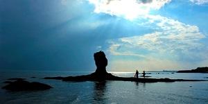 像鷹嘴、像石樁……這些礁石成青島旅游景觀