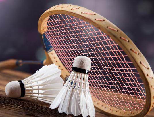 世界羽毛球巡回赛总决赛将连续4年在广州举办
